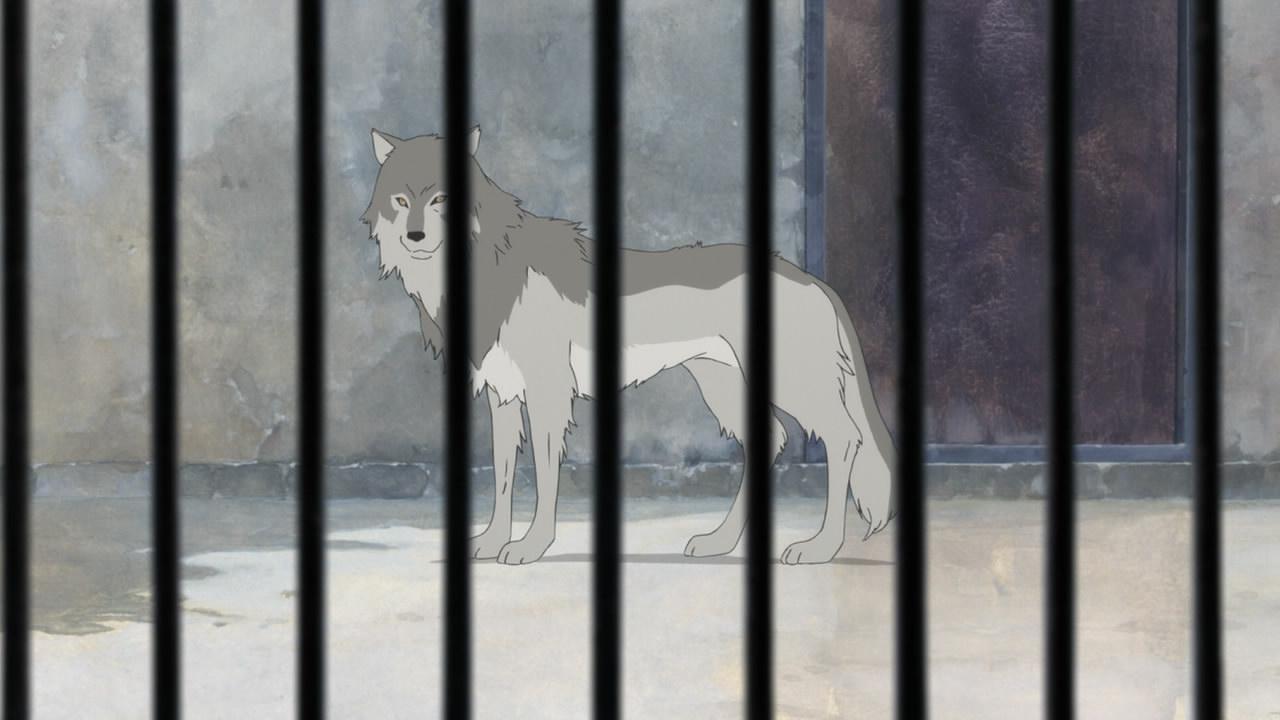 Anime Movie Slaparound Wolf Children